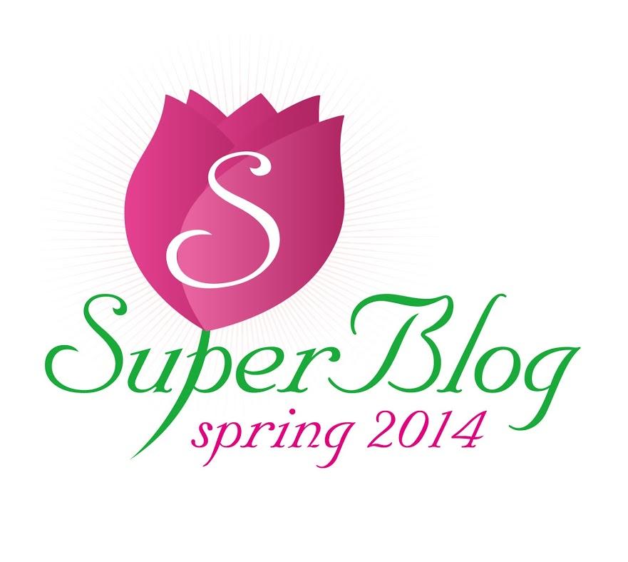 Lista premiilor Spring SuperBlog 2014